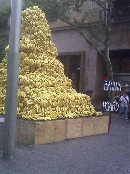 wtf,signs,bananas,piles