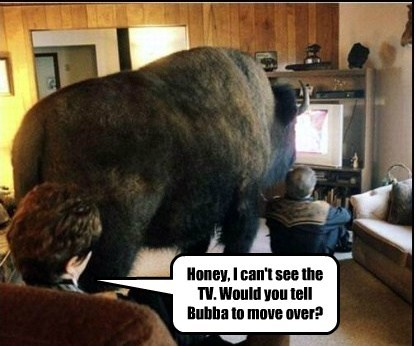 Honey, I can't see the TV. Would you tell Bubba to move over?