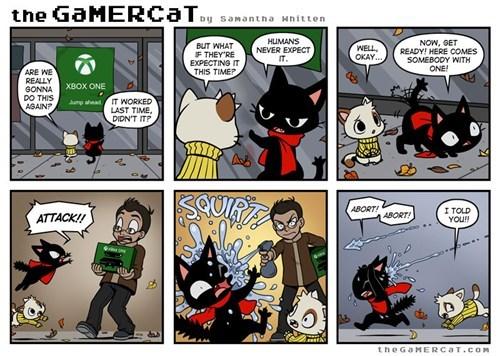 comics,web comics,the gamercat