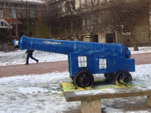 Check Out This TARDIS Cannon