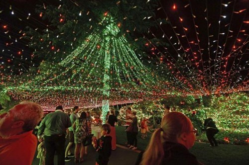 An Australian Christmas-Lover Blows Everyone Out of the Water With a 502,165-Light Display