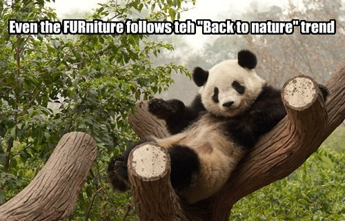 "Even the FURniture follows teh ""Back to nature"" trend"