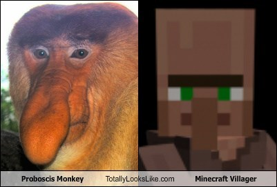 Proboscis Monkey Totally Looks Like Minecraft Villager