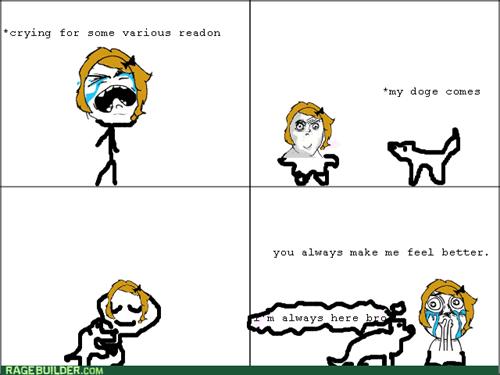 dogs,feels
