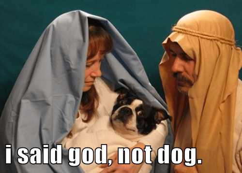 i said god, not dog.