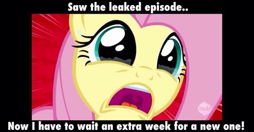 fluttershy,leaked episode,first world brony problems
