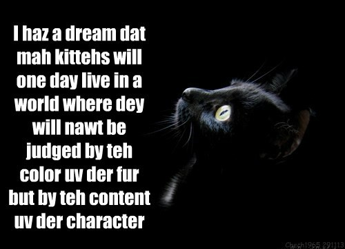 I can haz a dream