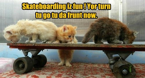Skateboarding iz fun ! Yor turn tu go tu da frunt now.