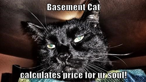 Basement Cat  calculates price for ur soul!