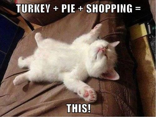 TURKEY + PIE + SHOPPING =  THIS!