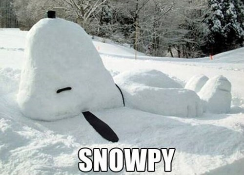 dogs,charlie brown,snow,puns,snow man,snoopy