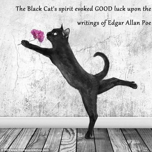 The Black Cat's spirit evoked GOOD luck upon the writings of Edgar Allan Poe