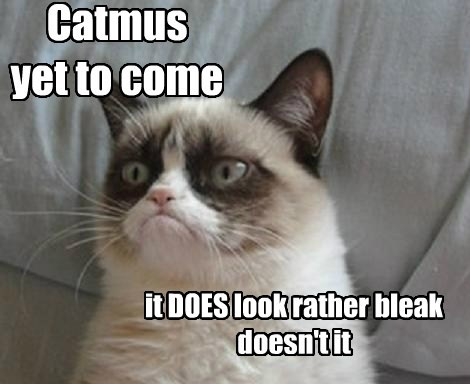 Catmus  yet to come