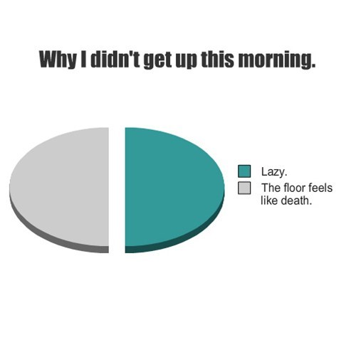 lazy,morning,Pie Chart,waking up