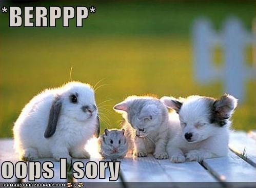 *BERPPP*  oops I sory