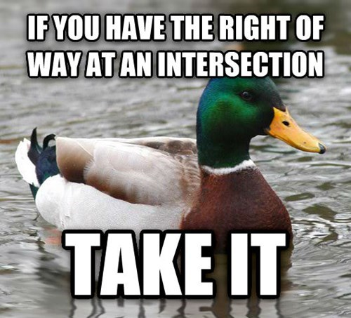 Actual Advice Mallard,Memes