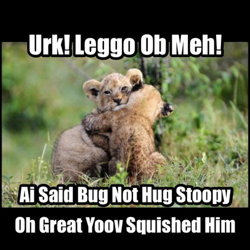 bugs,cute,hugs,cubs,lions