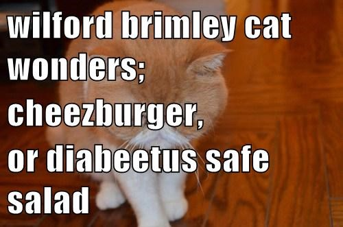 wilford brimley cat wonders; cheezburger, or diabeetus safe salad