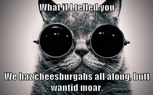 Cats,cheeseburgers,the matrix,parodies
