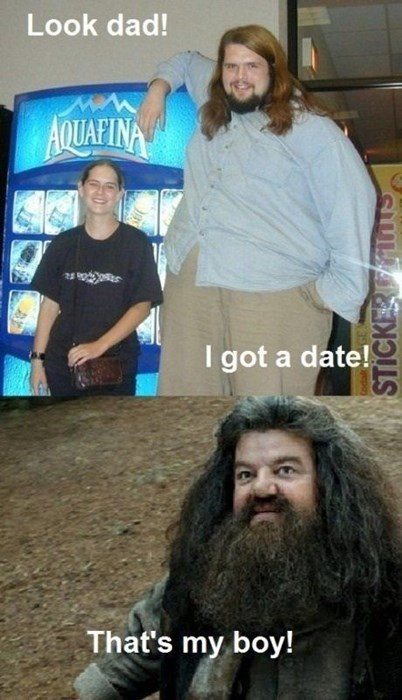 couples,huge,Hagrid,Harry Potter