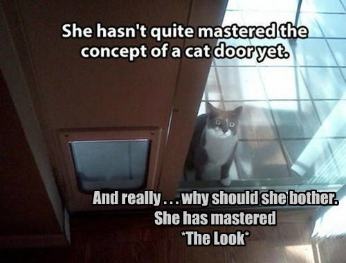 And really . . . why should she bother.  She has mastered  *The Look*