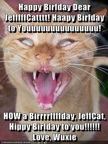 Happy Birfday Dear JefffffCatttt! Haapy Birfday to Youuuuuuuuuuuuuuu!  HOW a Birrrrffffday, JeffCat, Hippy Birfday to you!!!!!! Love, Wuxie