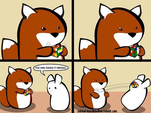 Webcomic,rubiks cube,animal marshmallow
