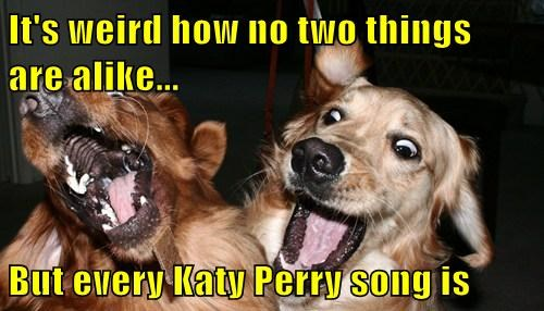 It's weird how no two things               are alike...  But every Katy Perry song is