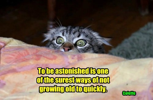 To be astonished is one  of the surest ways of not  growing old to quickly.