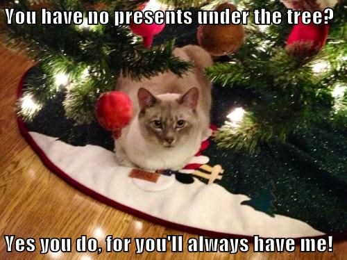 You have no presents under the tree?  Yes you do, for you'll always have me!