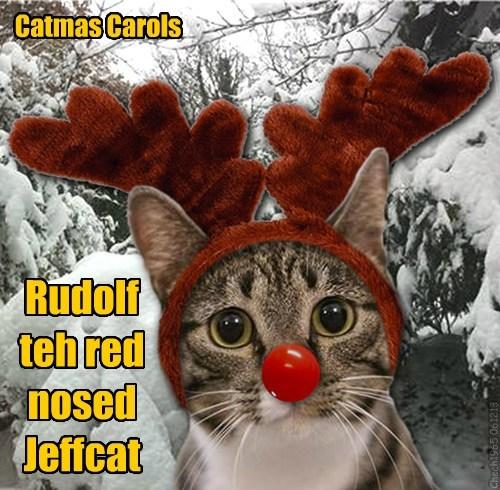 Catmas Carols