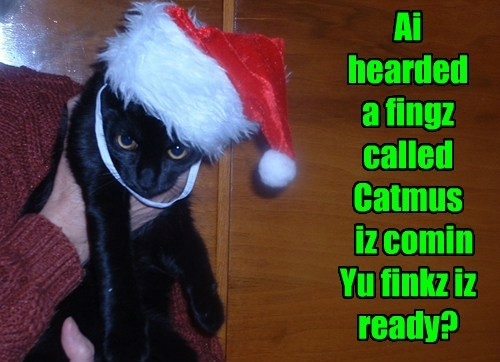 Ai hearded   a fingz called Catmus   iz comin Yu finkz iz ready?