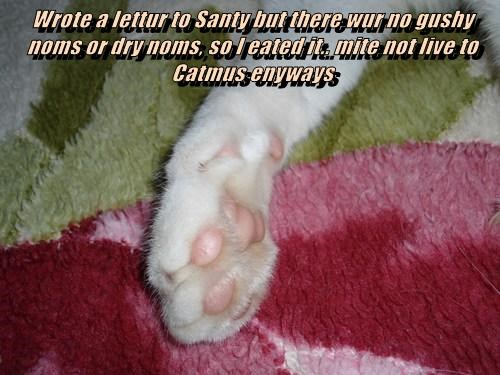 Wrote a lettur to Santy but there wur no gushy noms or dry noms, so I eated it.. mite not live to Catmus enyways