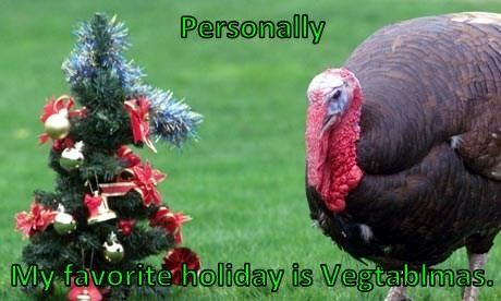 Personally  My favorite holiday is Vegtablmas.