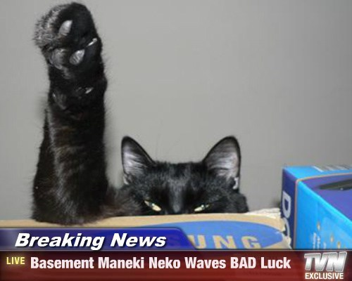 Breaking News - Basement Maneki Neko Waves BAD Luck