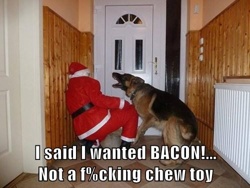 I said I wanted BACON!...                      Not a f%cking chew toy