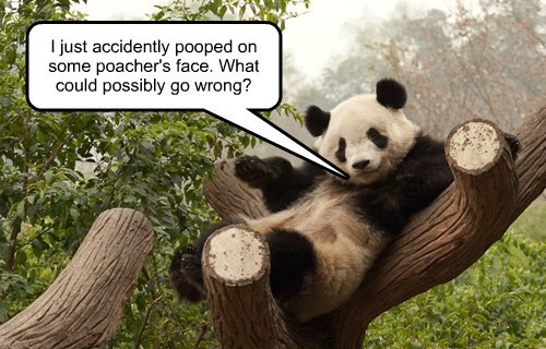 I just accidently pooped on some poacher's face. What could possibly go wrong?