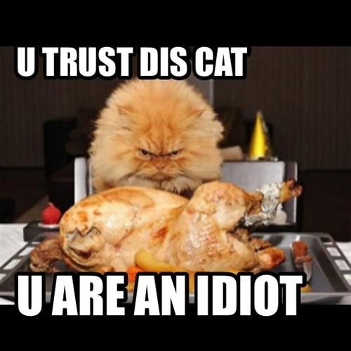 U TRUST DIS CAT