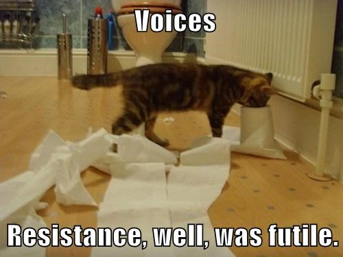 Voices  Resistance, well, was futile.