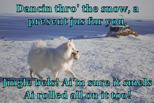 Dancin thro' the snow, a present jus fur you,   Jingle bels! Ai'm sure it smels Ai rolled all on it too!