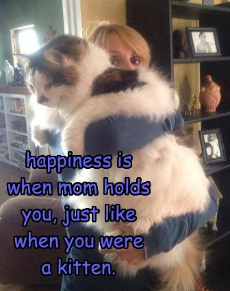 happiness is when mom holds you, just like when you were  a kitten.