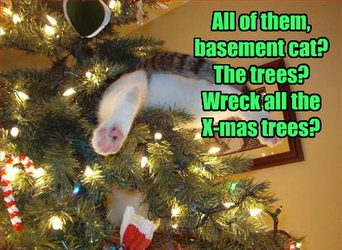 All of them, basement cat? The trees? Wreck all the  X-mas trees?