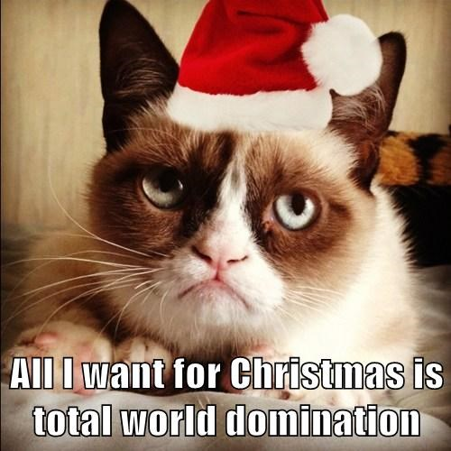 All I want for Christmas is total world domination