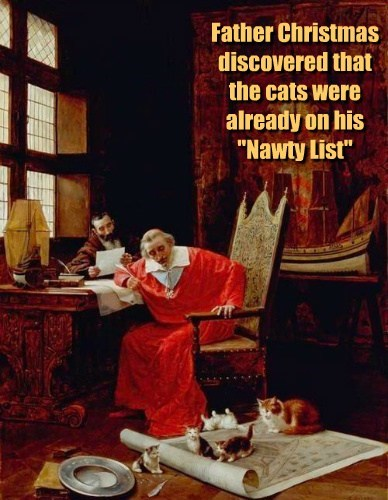 "Father Christmas discovered that the cats were already on his ""Nawty List"""