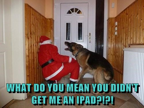 WHAT DO YOU MEAN YOU DIDN'T GET ME AN IPAD?!?!