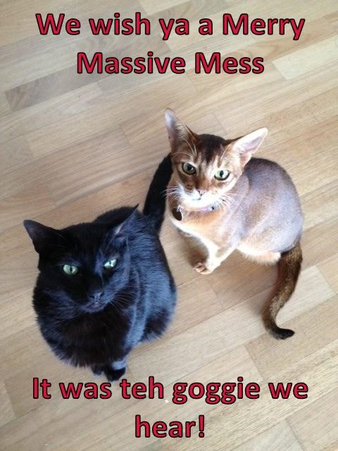 We wish ya a Merry Massive Mess   It was teh goggie we hear!