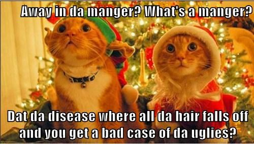 Away in da manger? What's a manger?  Dat da disease where all da hair falls off and you get a bad case of da uglies?