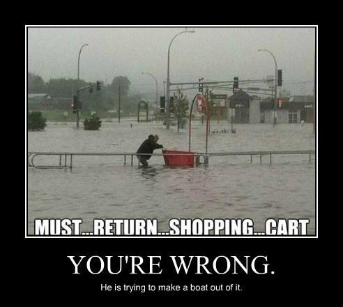 funny,idiots,shopping cart