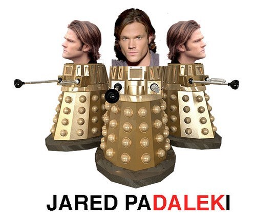 dalek,doctor who,Jared Padalecki