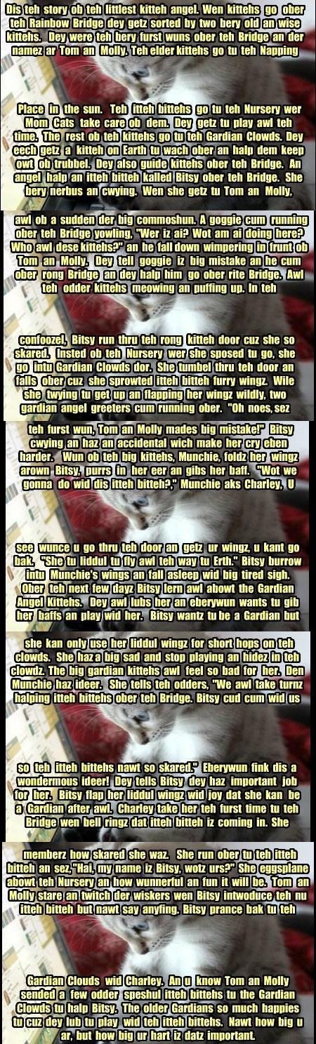 Bosco's Catmas Story
